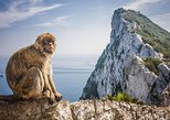 Gibraltar and Vejer Day Trip from Cádiz