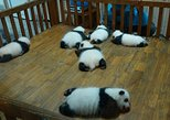 Everything Panda Private Day Tour in Chengdu