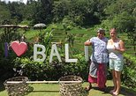 Private Bali Countryside Tour with separate tour guide