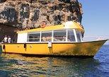 Boat & Snorkeling Trip in Puerto de Mogan