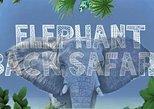 Cosmo Bali Private Tours-Bali Safari & Marine Park-Elephant Back Safari Package