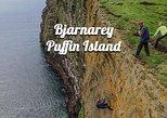 Bjarnarey Puffin Island