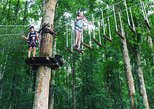Bali Treetop Adventure Park with Transfers