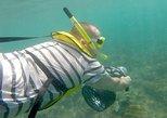 Underwater Power Snorkel Safari in Rincon