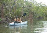 Kayaking Eco Tour in Fort Myers