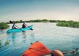 Abu Dhabi Eastern Mangroves Guided Kayaking Tour