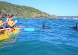 Australia & Pacific - Australia: Kayak with Dolphins and 4WD Great Beach Drive Day Trip from Noosa