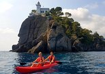 2-Hour Portofino Sunset Kayaking and Wine Tasting Tour