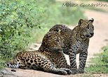 Full Day BIG 3 Safari Tour with Birding in Yala National Park by Expert Team