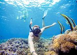Special Package Snorkeling With Manta At Nusa Penida With Crown Fast Cruise