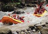 Bali White Water Rafting Experience