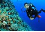 Scuba Diving Sampler, Sharm El Sheikh