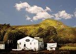 Loch Lomond and Glengoyne Whisky Distillery Half Day Tour from Glasgow