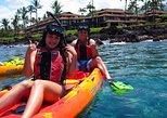 Paddle, Snorkel and Learn to Surf - All in a Day on Maui