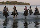 Niagara Falls Horseback Riding