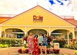 Small Group Oahu North Shore Circle Island Tour