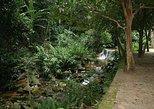 Botanical Garden and Tijuca Rainforest Jeep Tour