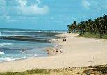 Praia Do Forte & Guarajuba Beach Day Trip