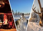 Santa Claus Village Guided Tour & Arctic Animals Adventure