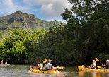 Wailua River Paddle