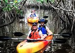East River Fakahatchee Preserve Two and a half hour Eco kayak tour
