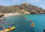 Curacao Kayak and Snorkel Adventure