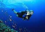8-Dive Scuba Adventure in Bayahibe