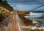 Private Guided Full Day Tsitsikamma National Park Tour from Port Elizabeth
