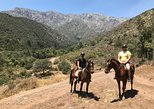 South America - Chile: 3 hour Horse ride in the Andes! Half day private tour from Santiago!