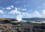 Guadeloupe Shore Excursion - Unmissable of Guadeloupe