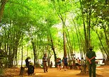 Cu Chi Tunnels & Saigon City Tour from Phu My Port