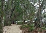 Tree of Life Rescue Center and Cahuita National Park