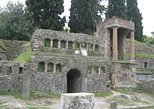 Naples Shore Excursion: Pompeii Half-day Trip from Naples