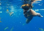 Turks and Caicos Shore Excursion: Ultimate Snorkeling