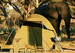Africa & Mid East - Botswana: CHOBE CAMPING 1DAY & 1NIGHT
