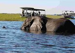 Africa & Mid East - Botswana: Bon voyage Victoria Falls