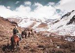 A verdadeira excursão Gaúcha de dia partindo de Mendoza: Rancho Don Daniel. Mendoza, ARGENTINA