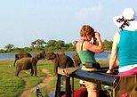 One Day Safari Tour to Both Yala and Udawalawe National Parks