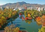 Sapporo: Book a Local