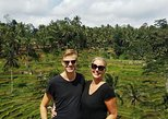 Half-Day Ubud Tour: Monkey Forest and Tegallalang Rice Terrace