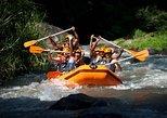 Bali Rafting, Ubud, and Jimbaran Day Tour