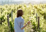 Australia & Pacific - Australia: 5 Hours Wineries, Tastings, Forest & Lunch at the Berry Farm