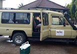 1 Day Mikumi National Park Safari