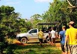 Private Tour : Sithulpawwa Rock Temple Tour Through Yala National Park