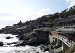 Busan City Tour - Haedong Yonggung Temple And Shopping in Lotte Premium Outlet