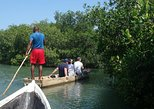 CARTAGENA CANOE MANGROVES