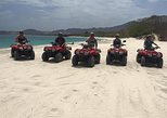 ATV Mountain and Beach Tour from Flamingo Beach