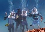Sea TREK Helmet Diving and Standup Paddleboard Lesson