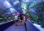 Antalya Aquarium admission with optional Antalya City Tour and Duden Waterfall