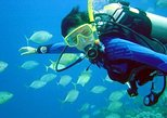 Scuba Diving for beginners with lunch